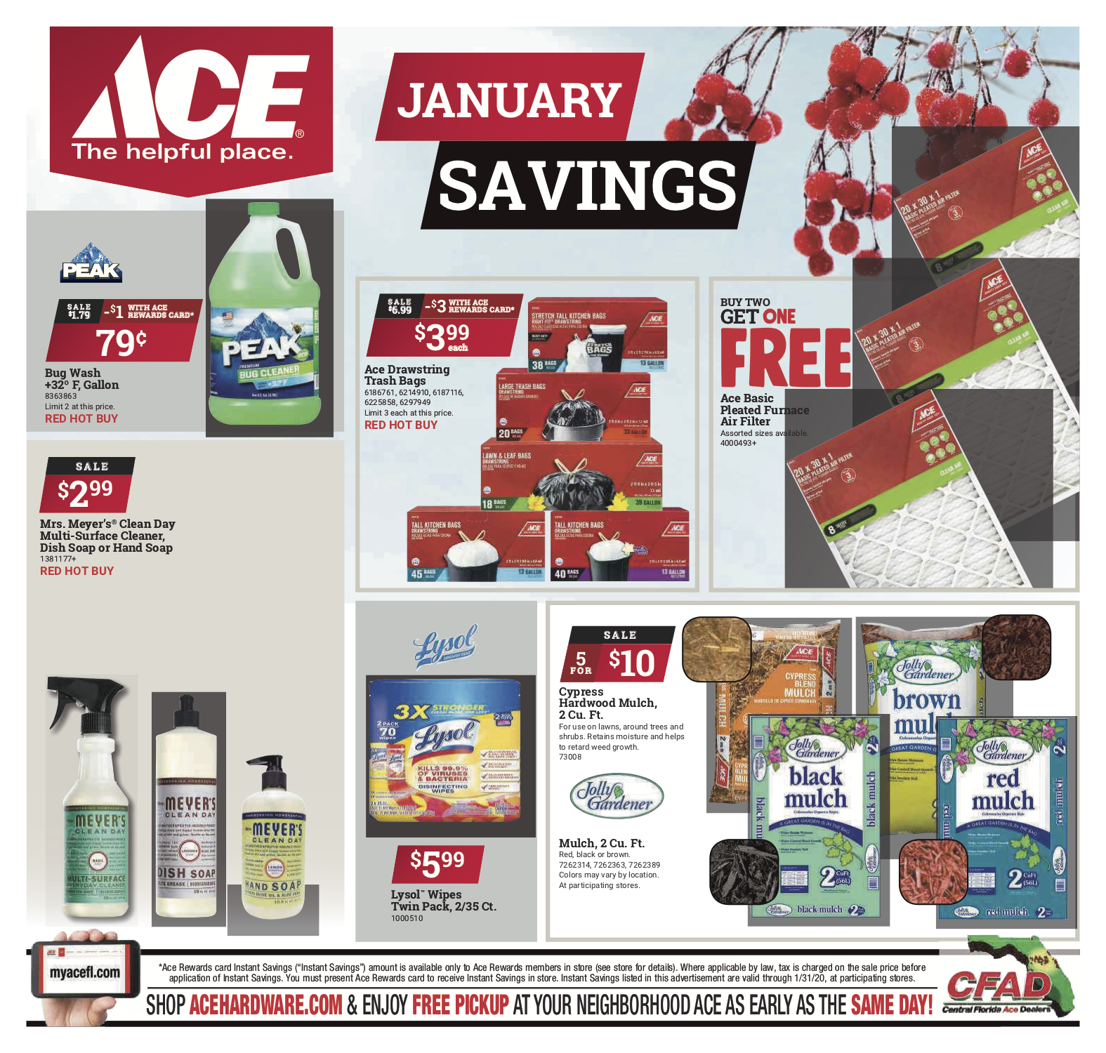 January Savings!